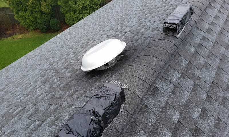 humane squirrel traps outside roof vent