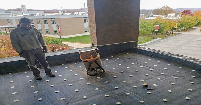 installing bird deterrents at the SUNY Cobleskill library